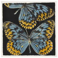 Donald Sultan | Butterflies, Jan. 25, 20 | Screen-print available for sale on www.kunzt.gallery