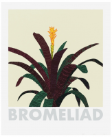 Jonas WOOD | Bromeliad | Screen-print available for sale on www.kunzt.gallery