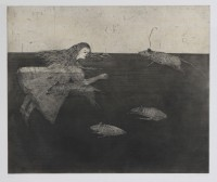 Kiki SMITH | Pool of Tears 1 | Etching and Aquatint available for sale on www.kunzt.gallery