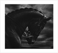 Robert LONGO | Untitled (Bucephalus) | Archival Print available for sale on www.kunzt.gallery