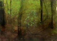 Thomas LANGE | Steinwald 10 | Mixed Media available for sale on www.kunzt.gallery